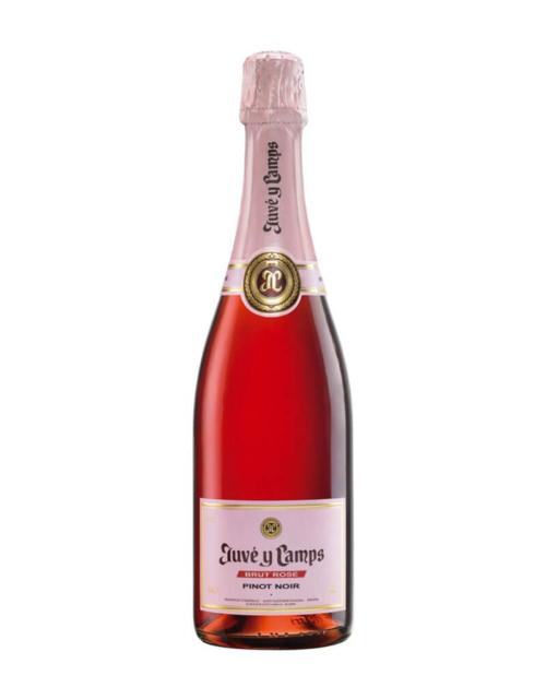 Juve-y-camps-Brut Rosé Pinot Noir Cava